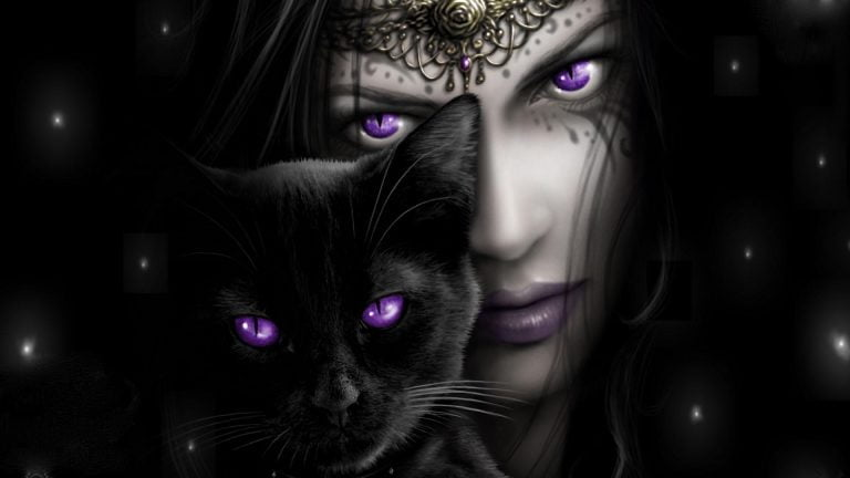The Legend of the Cats: From Deities to Witches