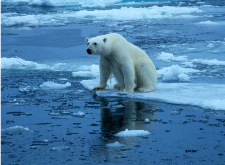 Is Climate Change A Potential Crisis Or A Devised Plan?